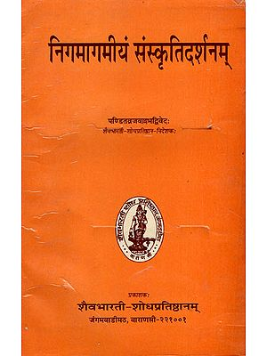 निगमागमीयं संस्कृतिदर्शनम - Nigmagamiyam Sanskriti Darshanam (A Collection of Essays)