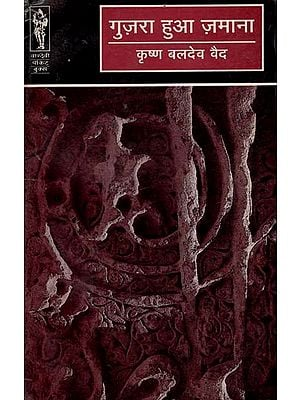 गुज़रा हुआ ज़माना - Guzra Hua Zamana (Novel)
