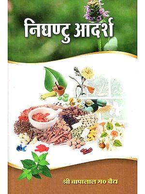 निघण्टु आदर्श: Nighantu Adarsha (Volume-1)