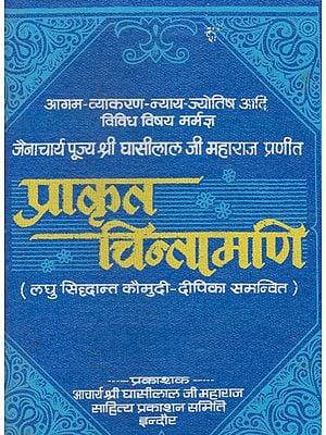 प्राकृतचिन्तामणि - Prakrit Chintamani of Jain Acharya Ghasilal Ji Maharaj