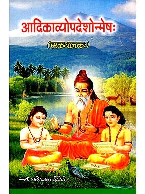 आदिकाव्योपदेशोन्मेष: Adi Kavya Updesha Anmesha