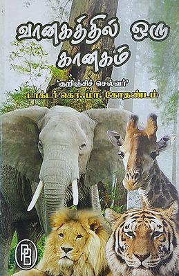A Jungle (Tamil)