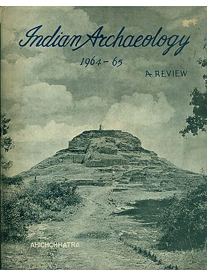 Indian Archaeology 1964-65 A Review (An Old and Rare Book)