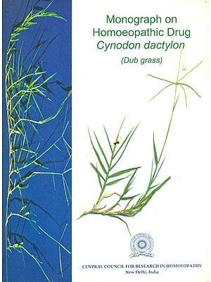 Monograph on Homoeopathic Drug Cynodon Dactylon (Dub Grass)