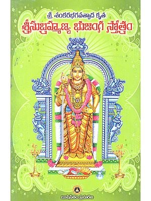 Sri Shankara Bhagavathpaada Krutha (Telugu)