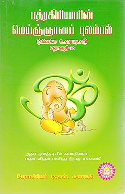 Badragiritar's Spiritual Feelings - Part 2-With Explanation (Tamil)