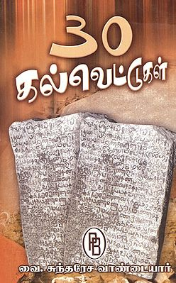 Thiry Stone Inscriptions with Details (Tamil)