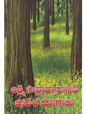 Atma Sakshatkaraniki Shodasa Yogalu (Telugu)