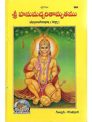 श्रीहनूमच्चरितामृतम् - Sri Hanumacharitamritam (Telugu)