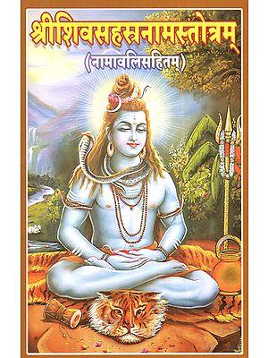 श्रीशिवसहस्रनामस्तोत्रम् - Sri Siva Sahasranama Stotram (Including Namavali)