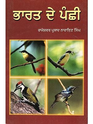 Birds of India (Punjabi)