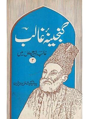 Ganjina-e-Ghalib In Urdu (An Old And Rare Book)