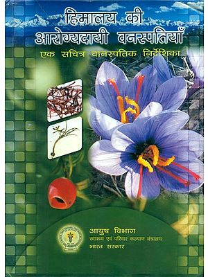 हिमालय की आरोग्यदायी वनस्पतियाँ - Aromatic Flora of the Himalayas