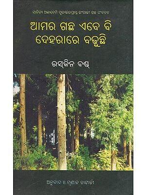 Amara Gachha Abebi Deharare Badhuchhi (Oriya)