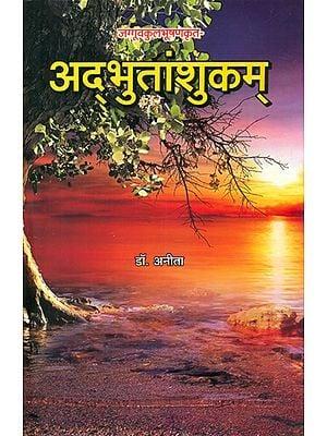 अद्भुतांशुकम् की नाट्यशास्त्रीय समीक्षा - Theatrical Review of Adbhutanshukam