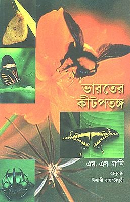 Insects (Bengali)