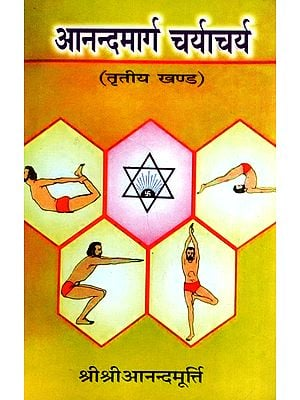 आनन्दमार्ग चर्याचर्य - Ananda Marg Charyacharya (part 3)