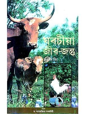 Domestic Animals (Assamese)