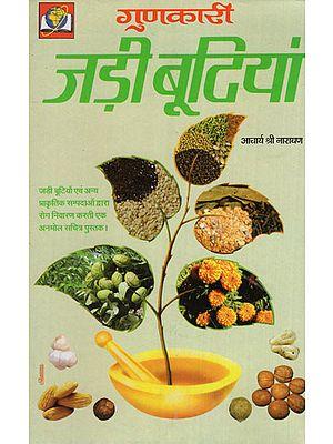 गुणकारी जड़ी बूटियां - Useful Plants and Herbs
