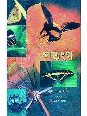 Patanga- Insects (Assamese)
