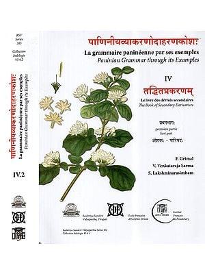 पाणिनीयव्याकरणोदाहरणकोश: (तद्धितप्रकरणम्)- Paninian Grammar Through its Examples (The Book of Secondary Derivatives)- Set of Two Volumes