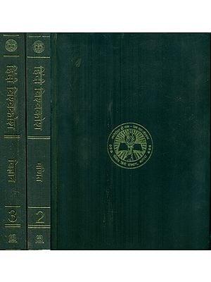 हिंदी विश्वकोश- Hindi Encyclopedia of Earth, Geography, Maths and Science (Set of 3 Volumes)