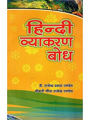 हिन्दी व्याकरण बोध - Hindi Grammar Comprehension