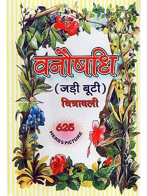 वनौषधि- जड़ी बूटी : Herbal Treatments: Jadi Buti (Rare Herbs and Names of Different Languages, Including Brief Properties, Religion and Usage)