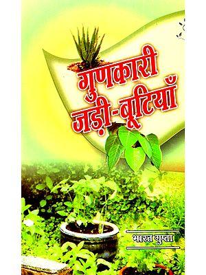 गुणकारी जड़ी बूटियाँ- Quality Herbs