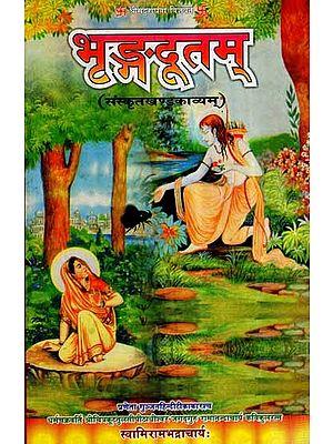 भृङ्गदूतम् (संस्कृत खण्ड काव्यम्)  - Bhrngadutam (Sanskrit Volume Poetry)