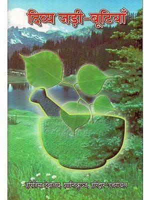 दिव्य जड़ी – बूटियाँ : Divine Herbs