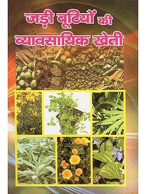 जड़ी बूटियों की व्यावसायिक खेती - Commercial Cultivation Of Herbs