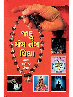 Jadu Mantra Tantra Vidhya (Gujarati)