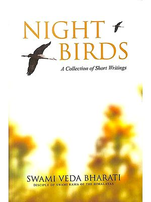 Night Birds (A Collection of Short Writings)