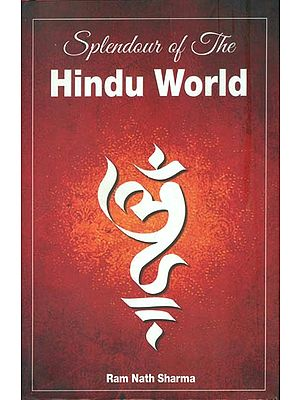Splendour of The Hindu World