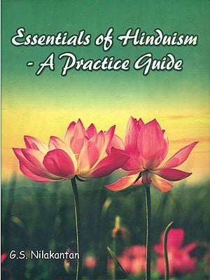 Essentials of Hinduism - A Practice Guide