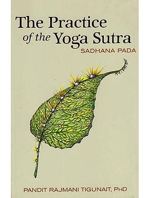 The Practice of the Yoga Sutra