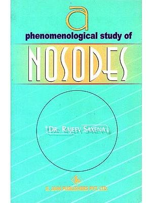 Phenomenological Study of Nosodes
