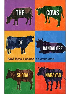 The Cows of Bangalore (And How I Came to Own One)
