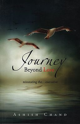 Journey beyond Love (Reinstating The Executive)
