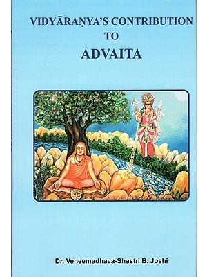 Vidyaranya's Contribution to Advaita