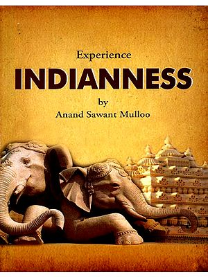 Experience Indianness (Anand Sawant Mulloo)