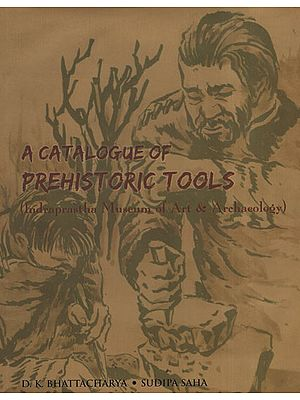 A Catalogue of Prehistoric Tools (Indraprastha Museum of Art and Archaeology)