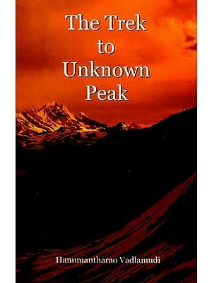 The Trek to Unknown Peak