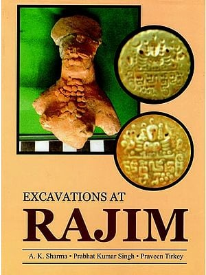 Excavations at Rajim
