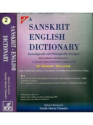 A Sanskrit English Dictionary (Set of 2 Volumes)