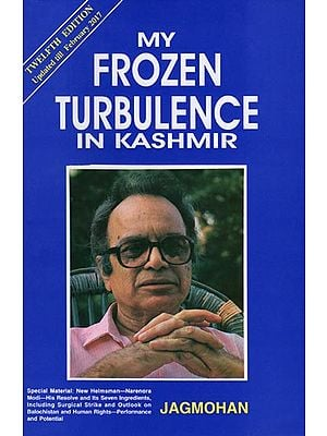 My Frozen Turbulence In Kashmir