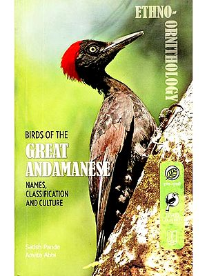 Birds of The Great Andamanese (Names, Classification and Culture)