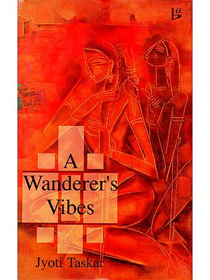 A Wanderer's Vibes