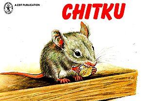 Chitku (Story)